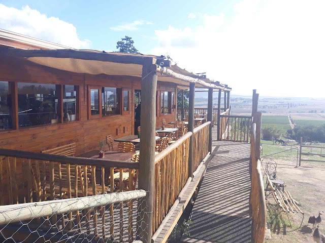 Alpaca Loom Coffee Shop