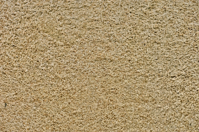 Dirty carpet texture