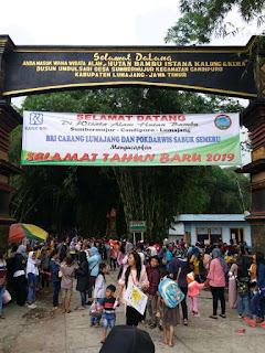 Hutan Bambu Jadi Pilihan wisatawan
