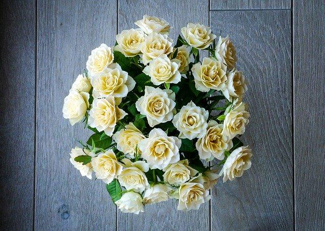 Gambar bunga mawar indah