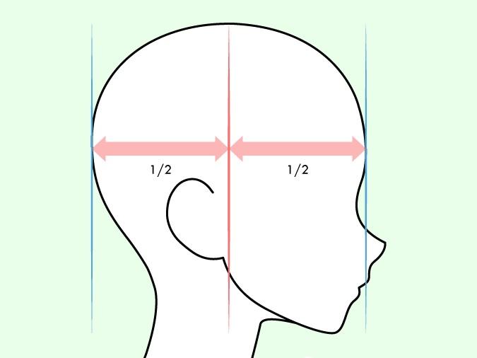Penempatan telinga anime pada tampilan sisi kepala