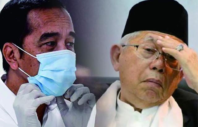 Haikal: Jokowi Pusing Tangani Corona, Ma'ruf Amin Hilang Ditelan Bumi