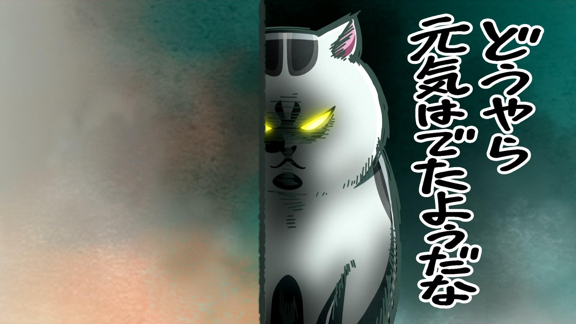 Inu to Neko Docchi mo Katteru to Mainichi Tanoshii Episode 02 Subtitle Indonesia