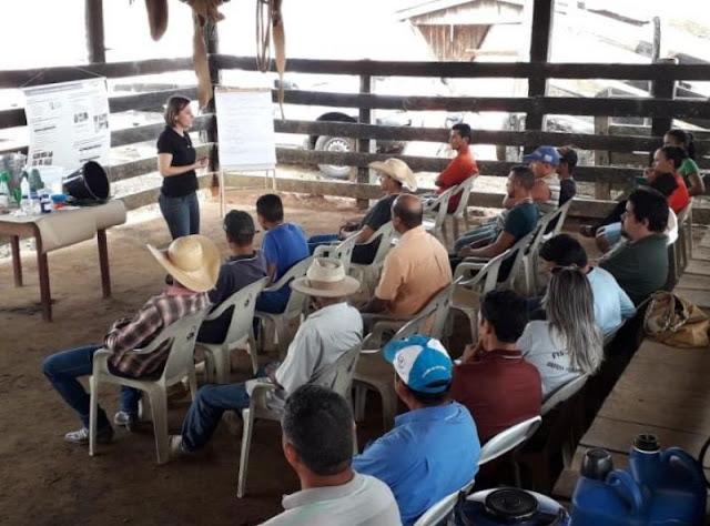 Produção de leite é avaliada com foco no Programa de Boas Práticas de Ordenha em Rondônia
