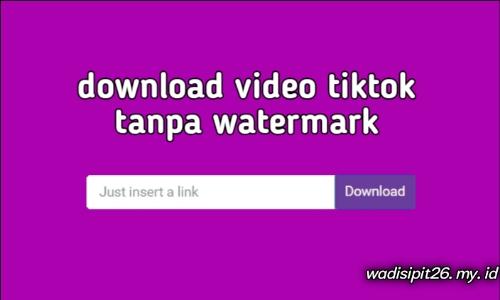 cara download video tiktok tanpa watermark langsung ke galery handphone