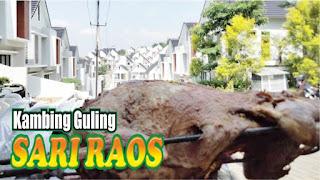 Kambing Guling Muda di Lembang ! Best Seller, kambing guling di lembang, kambing guling muda lembang, kambing guling muda, kambing guling,
