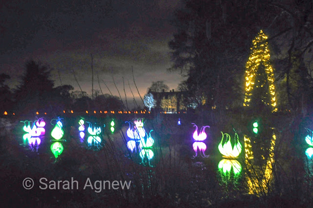 Lanterns at Glow Wild 2019 at Wakehurst, Sussex photo by Sarah Agnew Modernbricabrac