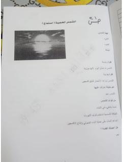 حل الوحدة الأولي في اللغة العربية الصف الثامن الفصل الدراسي الثاني