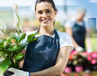 4 Bisnis Paling baik Modal Kecil yang Tepat untuk Pemula Dijamin Mantap