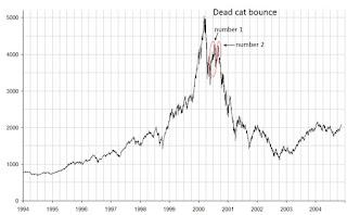 ölü kedi sıçraması nedir