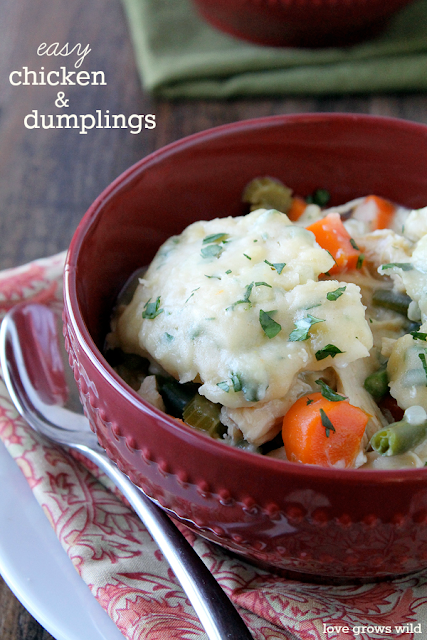 Chicken and Dumplings is a delicious one-pot meal that will satisfy your biggest comfort food craving!
