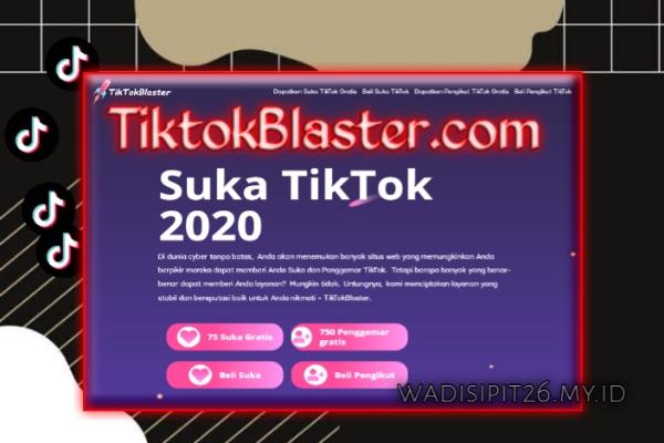 Tiktok blaster.com dapatkan followers like dan views tiktok secara  gratis 2020