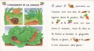4 - Je lis avec les animaux de la campagne