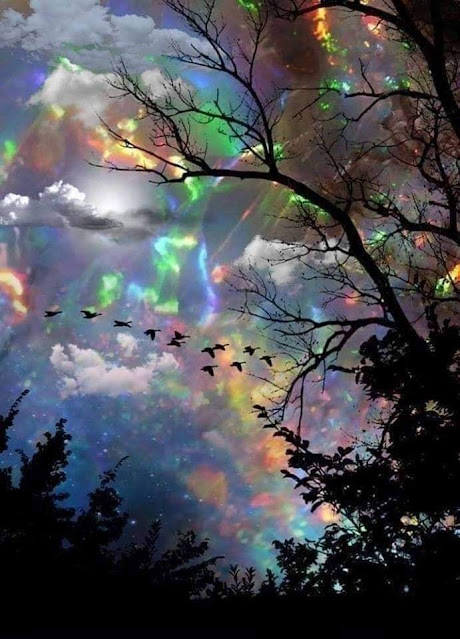 picture of a scattered rainbow
