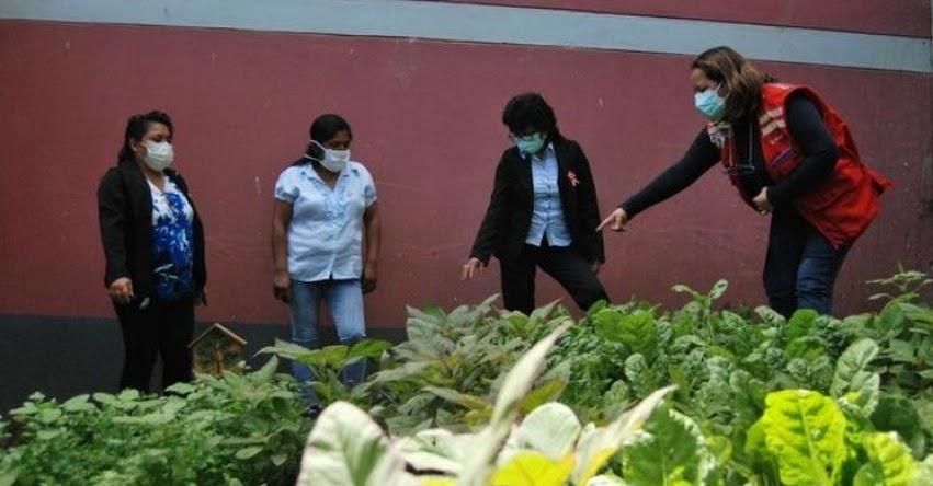 QALI WARMA: Estudiantes de El Faique complementan alimentación del Programa Social con huertos familiares y escolar - www.qaliwarma.gob.pe