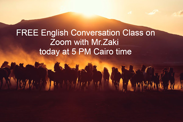 IELTS and General Conversations with Mr.Zaki on Zoom