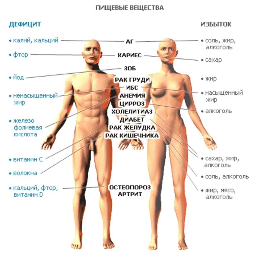 организм человека среда обитания паразитов