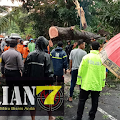 Breaking News:  Hujan Disertai Angin Kencang Porak - Porandakan Wilayah Kabupaten Magelang Bagian Selatan