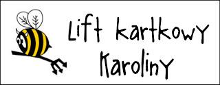 http://diabelskimlyn.blogspot.com/2016/10/lift-kartkowy-karoliny.html