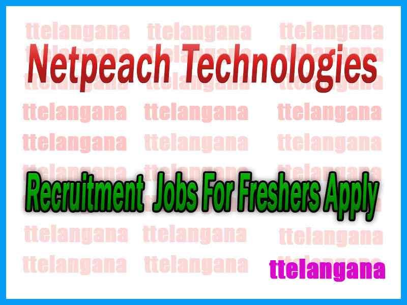 Netpeach Technologies Recruitment Jobs For Freshers Apply