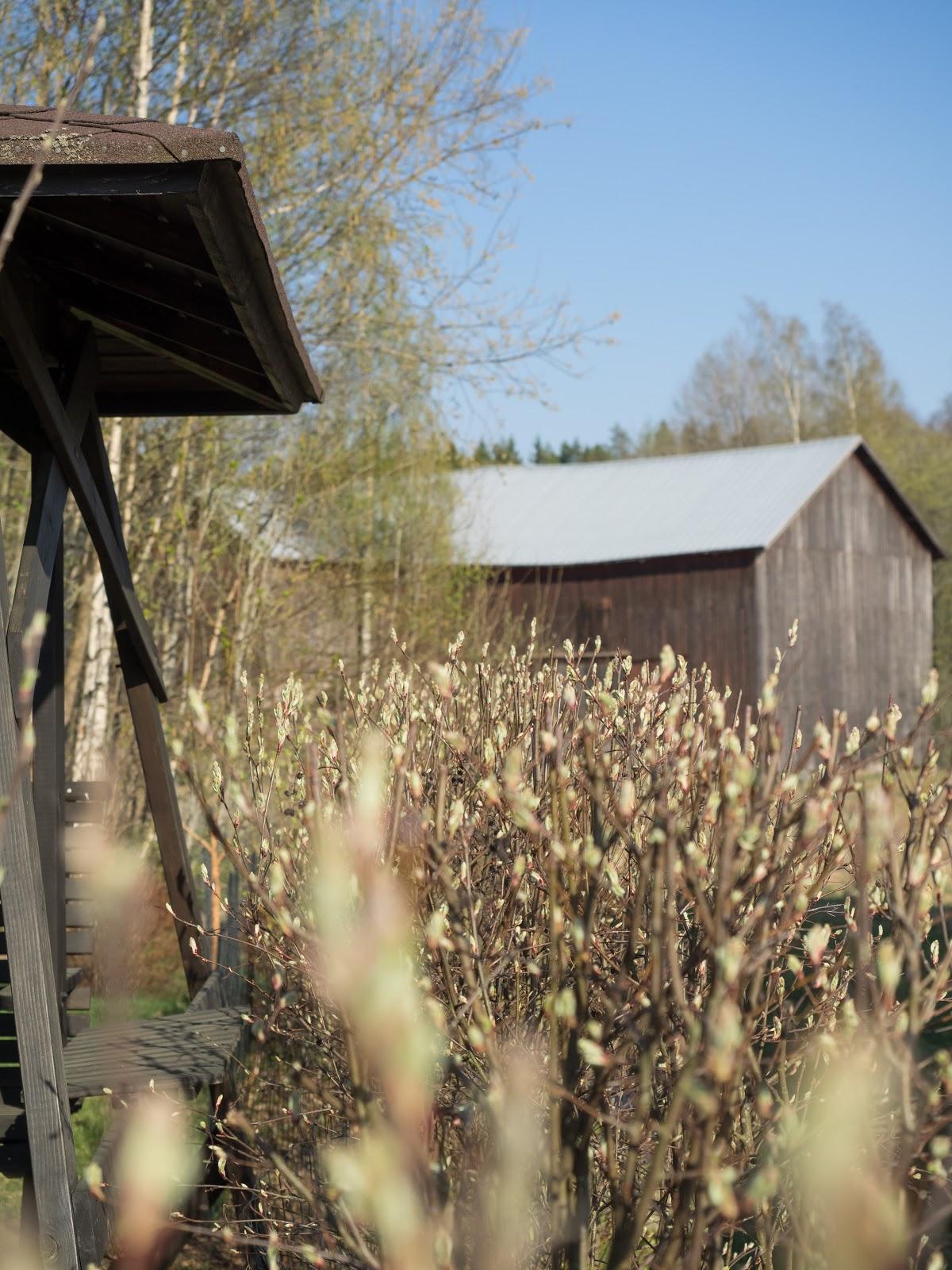 Talostakoti puutarha lato