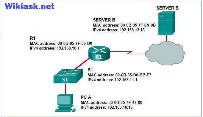 CCNA 2 v6.0 RSE Chapter 1 Exam q11