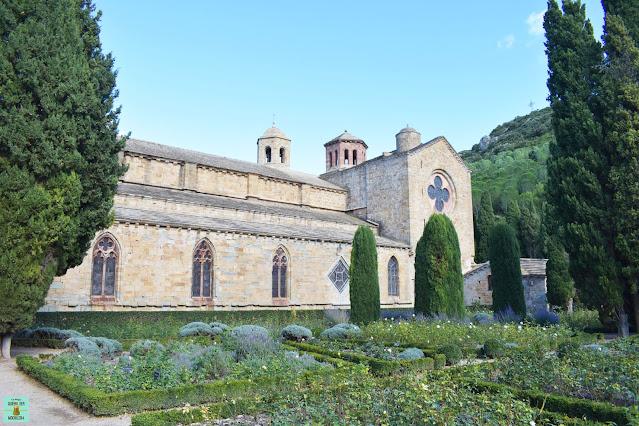 Jardín con rosales de la Abadía de Fontfroide, Francia