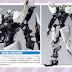 "The Custom Gundam Astray from GIMM & Ball's World Challenge is ""Noise Canceller"""