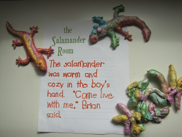 FIAR The Salamander Room