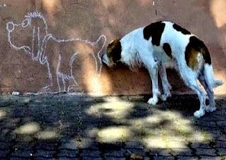 I cani inviarono un ambasciatore da Giove (Fedro)