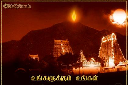 கார்த்திகை தீப திருநாள் வாழ்த்துக்கள் | Karthigai Deepam Wishes