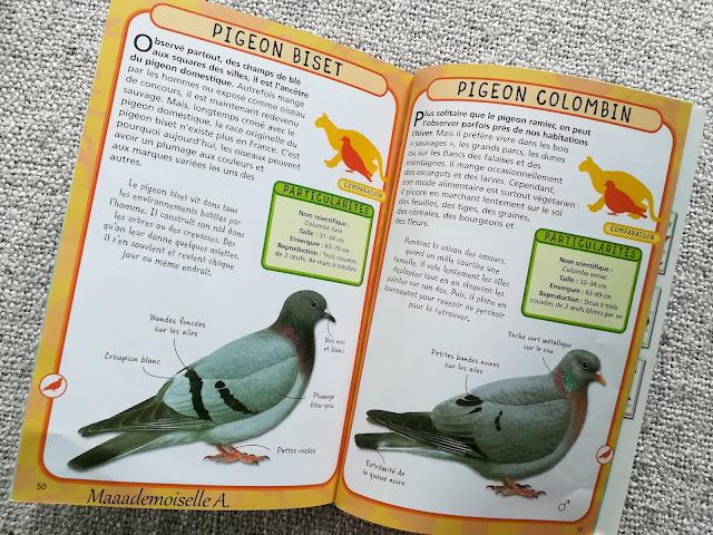 || Petit guide de poche Les oiseaux des jardins (Présentation & Avis)(Chut, les enfants lisent # 109)