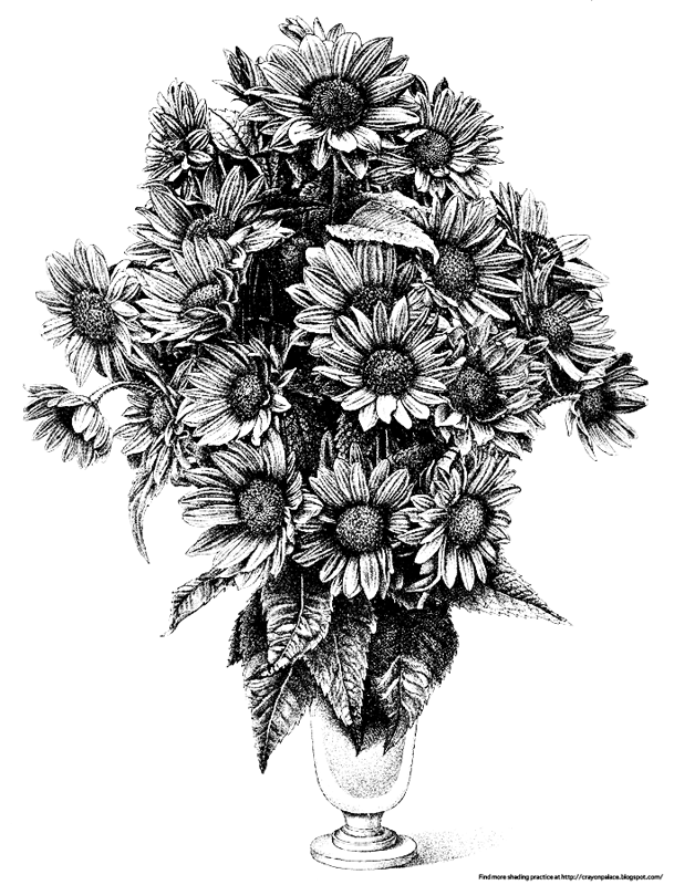 Practice Shading A Vase Of Sunflowers Crayon Palace