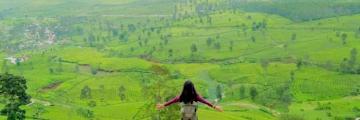 Wisata Alam Wayang Windu Panenjoan, Keindahan Bukit Kebun Teh Dari Ketinggian 1800 Mdpl