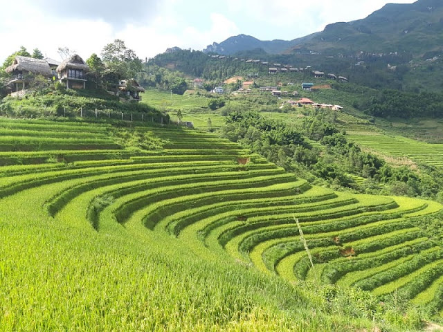 Sapa Tour 2 Days - Where to go, what to eat and where is great