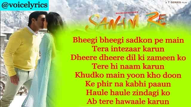 Lyrics Of Sanam Re In English & Hindi