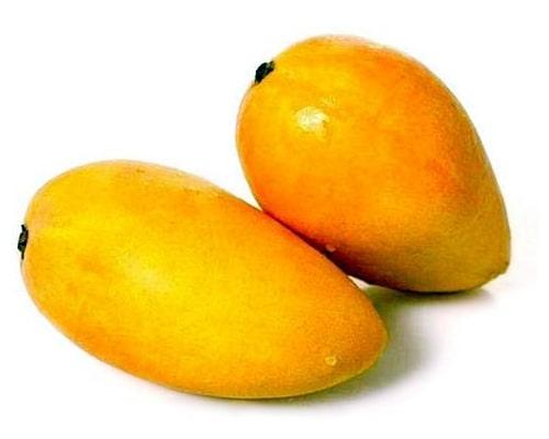 mango images, yellow mango, mango picture, mango fruit photo, Stock images, mango images free download