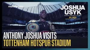 Tottenham Talk on The Stadium Debate