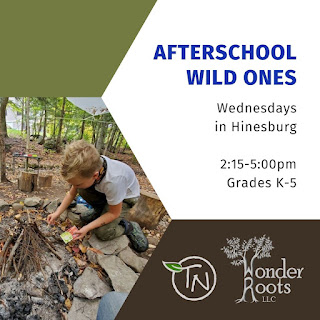 A photo of a child lighting a campfire and to the right, the following text: Afterschool wild ones Wednesdays in Hinesburg 2:15-5pm Grades K-5