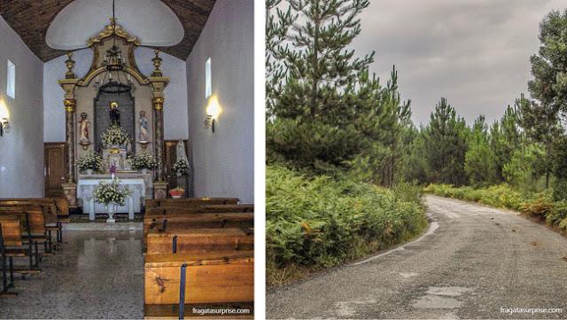 O altar da Capela de Jesus e um bosque nos arredores de O Porriño, no Caminho de Santiago
