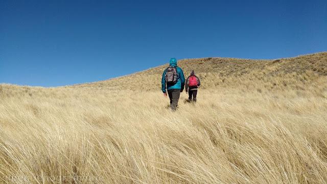 Cumbre, la tordilla, cerro, sierra, trekking