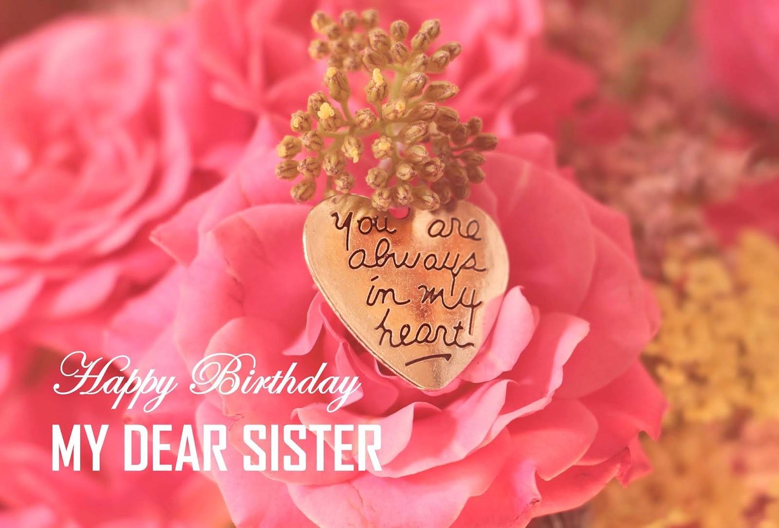 Dear Sister Birthday Letter For Sister.Happy Birthday Wishes For Sister My Emotions