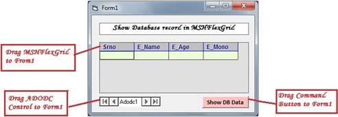 Controls Description for show record in MSHFlexGrid