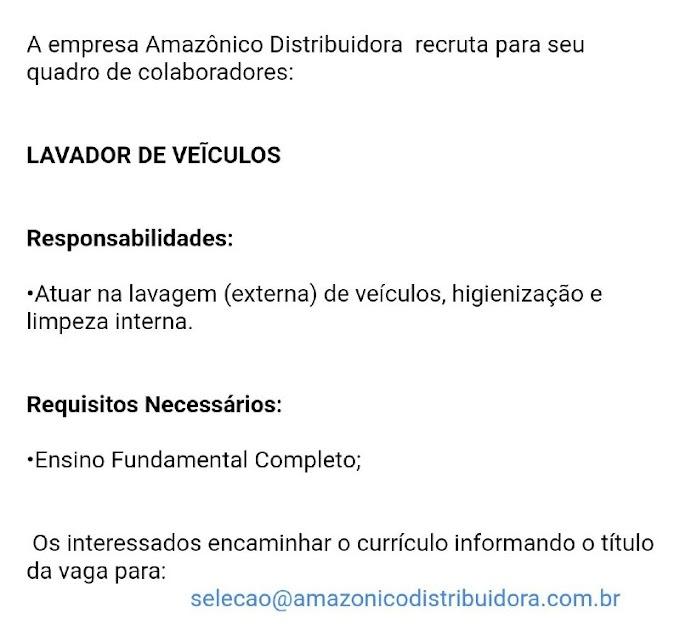 LAVADOR DE VEÍCULOS