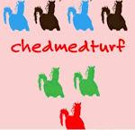 chedmedturf