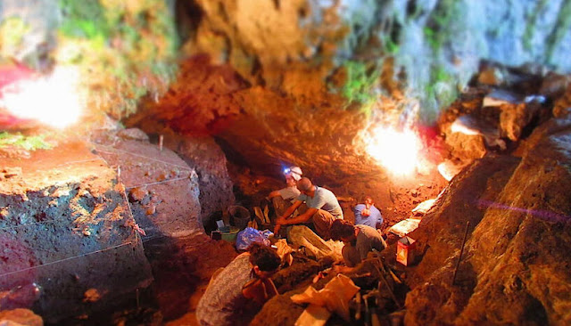 Human environmental genome recovered in the absence of skeletal remains
