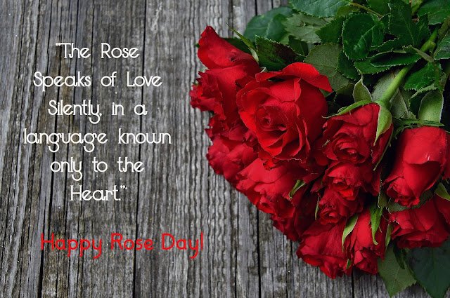 Rose Day picture 2020