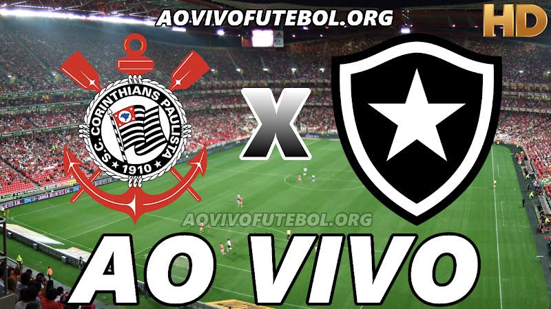 Corinthians x Botafogo Ao Vivo na TV HD