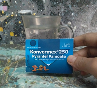 konvermex obat cacing untuk seluruh keluarga