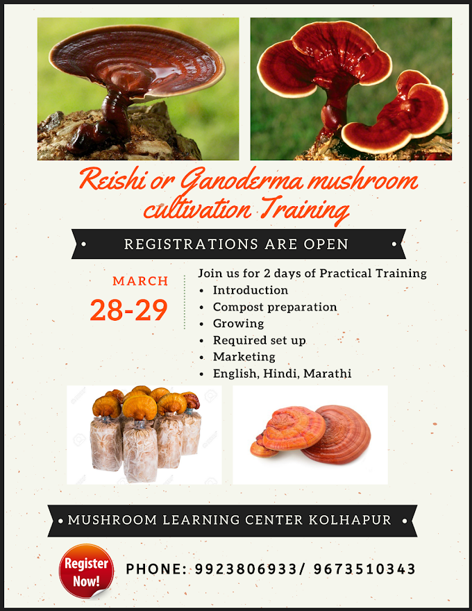 Reishi Mushroom Training | Ganoderma Mushroom Training | Mushroom Training | Maharashtra